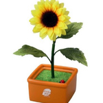 Hanappa Conversation Partner (Sunflower)