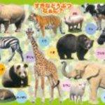 I wish to animals 30 piece Picturesque favorite puzzles? 26-206