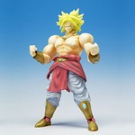 Dragonball Z Hybrid Action Figure Broly