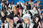 Bleach - The Gotei 13 Jigsaw Puzzle