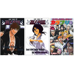 BLEACH - Character Book  (4 Volume Set)