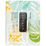 Kaya (Net Fabric) Handkerchief  - Monstera