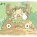 108-233 on the head of My Neighbor Totoro is a 108 piece