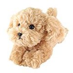 Lap I got this beige plush toy poodle