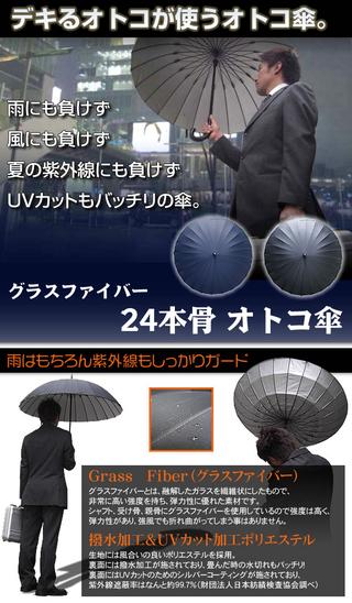 Fiberglass 24 Rib Mens Umbrella (Black)