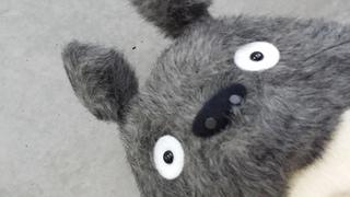 O-Totoro L dark gray