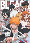 Bleach - Solid Resolve Jigsaw Puzzle