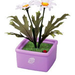 Hanappa Conversation Partner (White Margaret)