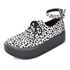 BELLY BUTTON No.870 / Cheetah Shoes