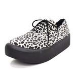 BELLY BUTTON No.8806 / Cheetah Oxfords